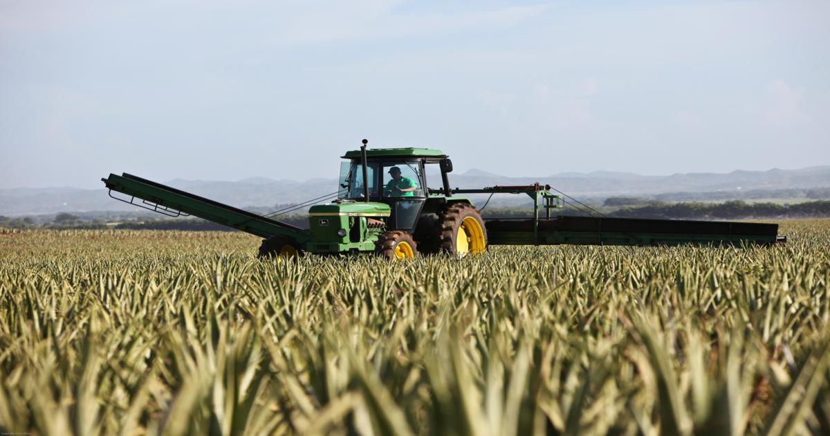 <p><strong>Obrigatoriedade de frequência de ação de formação relativamente à condução de veículos agrícolas</strong></p>